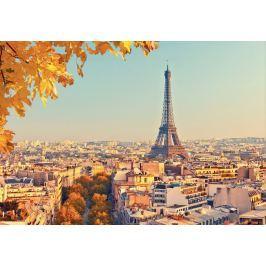 1Wall 1Wall Vliesová fototapeta Podzimní Paříž 366x253 cm