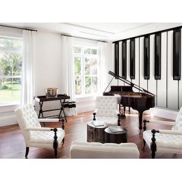 1Wall 1Wall fototapeta Piano 315x232 cm