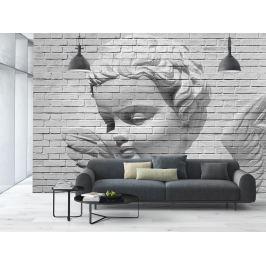 Wizard+Genius W+G fototapeta 3D andělská stěna 366x254 cm