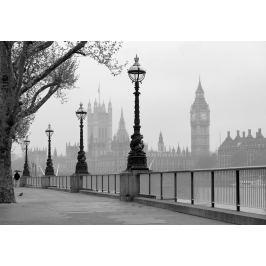 Wizard+Genius W+G fototapeta Mlha v Londýně 366x254 cm