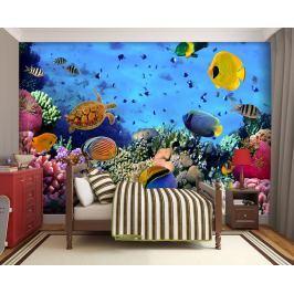 1Wall 1Wall fototapeta Mořský svět 315x232 cm Tapety