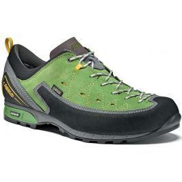Pánské boty Asolo Apex GV Velikost bot (EU): 42,5 / Barva: šedá/zelená