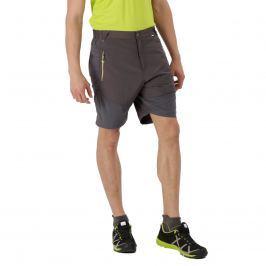 Pánské kraťasy Regatta Sungari Shorts Velikost: XL / Barva: hnědá