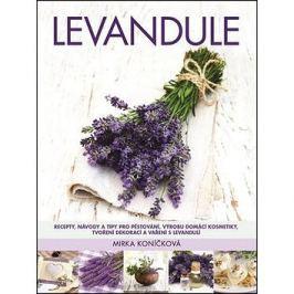Levandule: Recepty, návody a tipy pro pěstování, výrobu domácí kosmetiky, tvoření dekorace