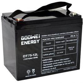 GOOWEI ENERGY OTL75-12, baterie 12V, 75Ah, DEEP CYCLE