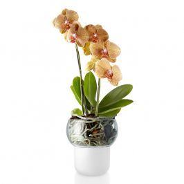 Eva Solo Skleněný samozavlažovací květináč na orchideje Ø 13 cm