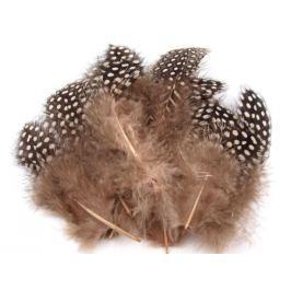 Slepičí peří délka 8-13 cm (1 sáček)