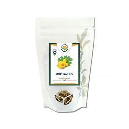 Salvia Paradise Mochna husí nať 100 g