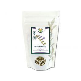 Salvia Paradise Šišák vousatý nať 50 g
